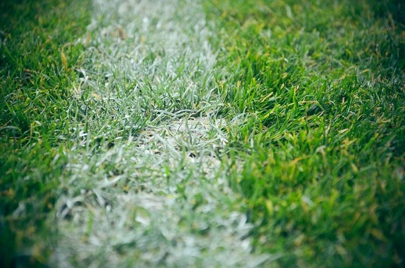 Murawa stadionu piłkarskiego