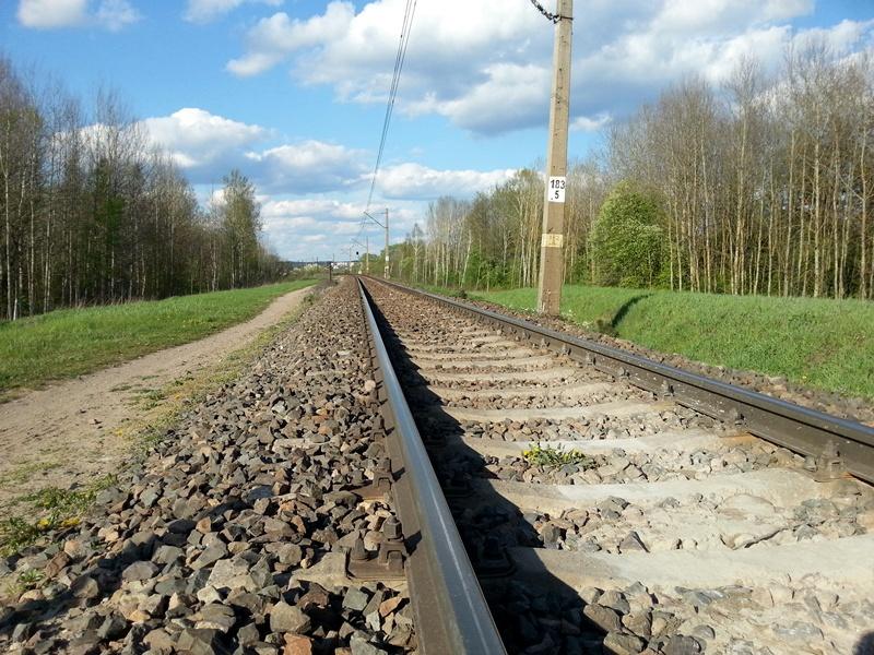 Tory kolejowe biegnące przez tereny zielone