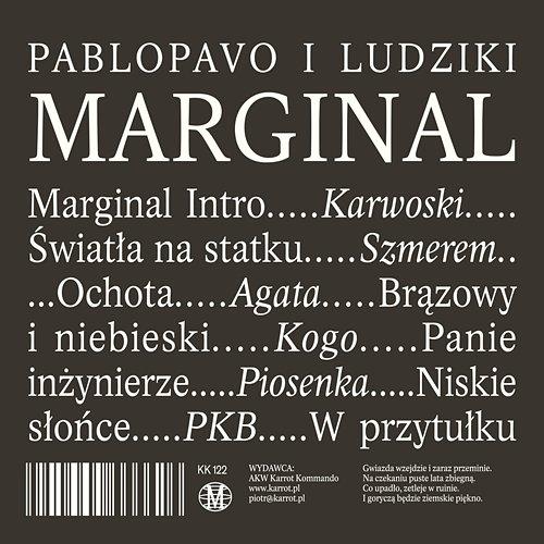 Panie inżynierze - Pablopavo i Ludziki