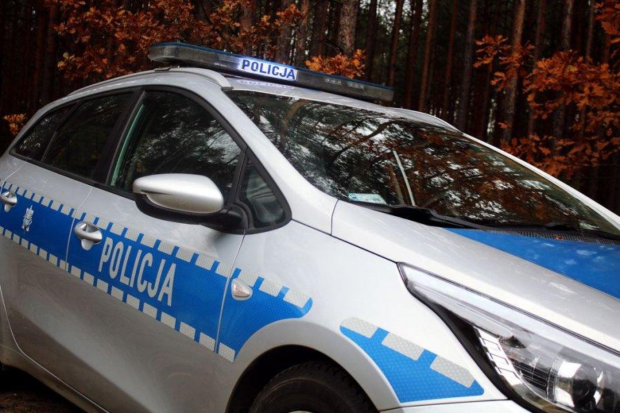 Radiowóz policyjny na tle drzew