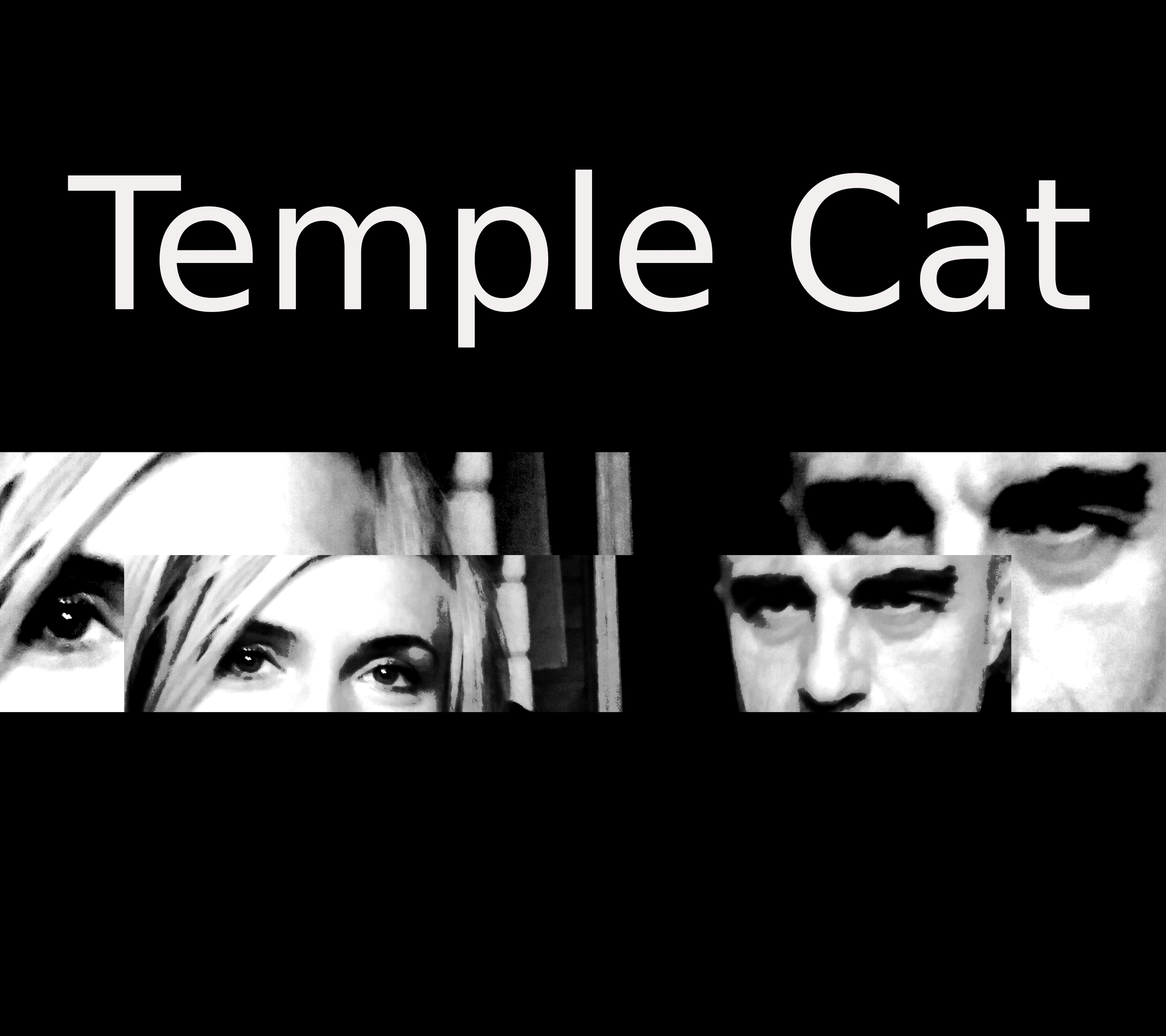 In Silence - Temple Cat
